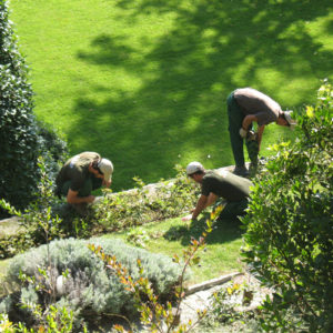 manutenzione-giardini-laspezia